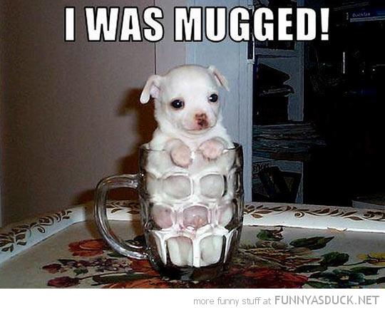 I Was Mugged