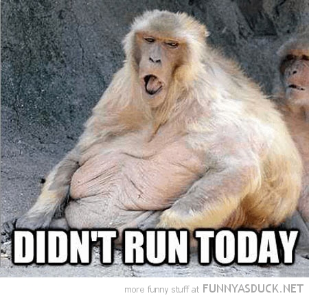Didn't Run Today