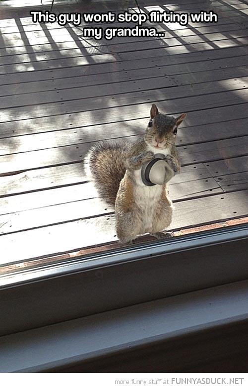 Flirty Squirrel