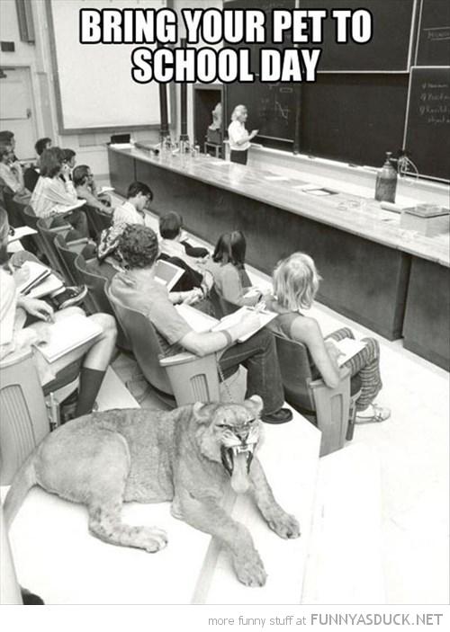 Pet To School