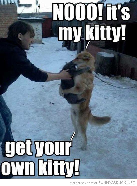 It's My Kitty!