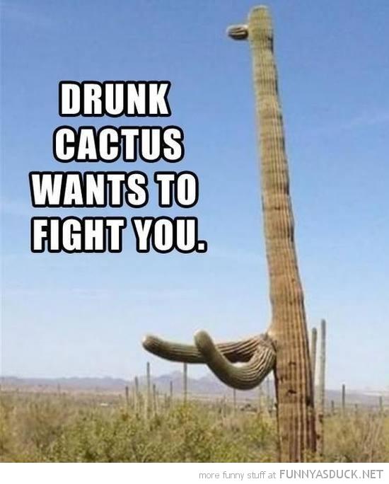 Drunk Cactus