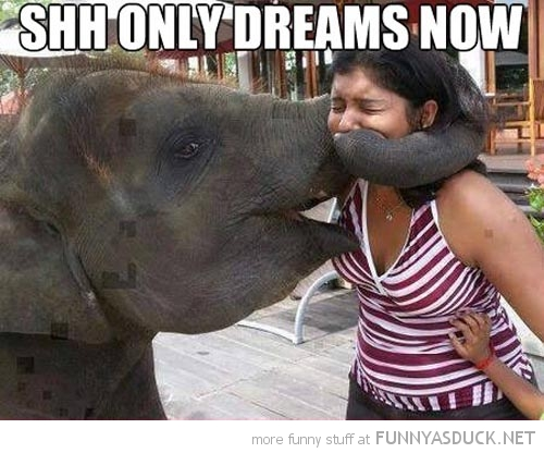 Only Dreams Now