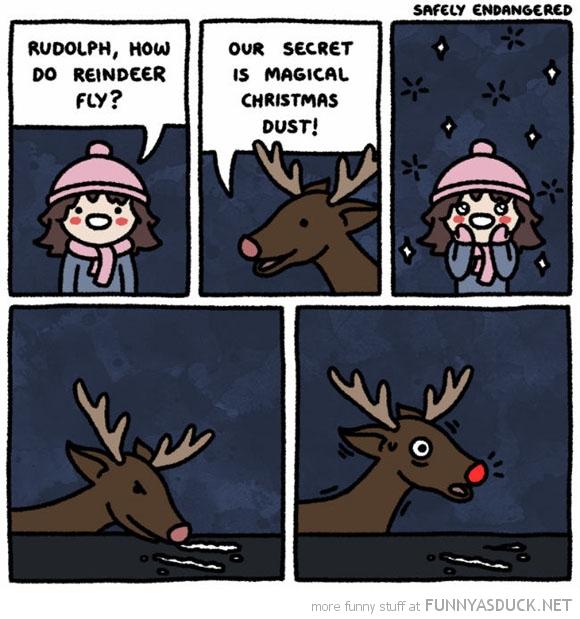 How Do Reindeer Fly?