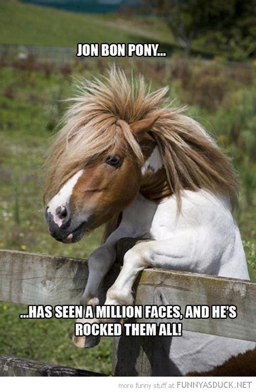 Jon Bon Pony