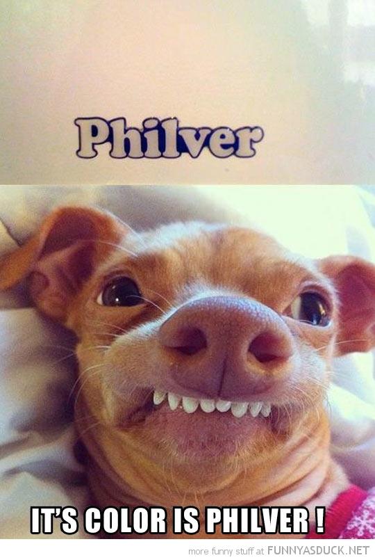 Philver