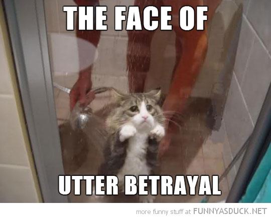 Utter Betrayal