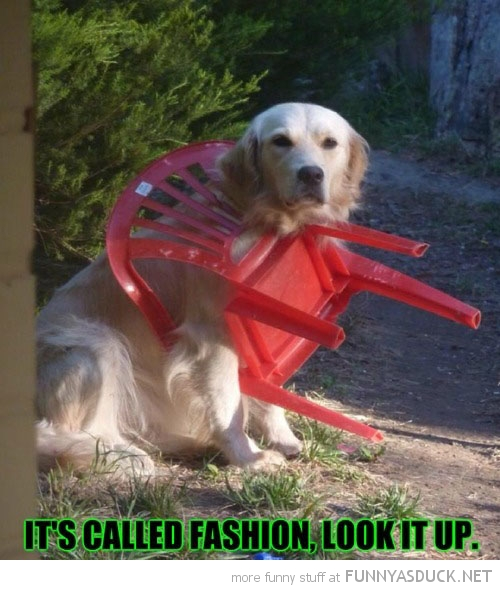 It's Called Fashion