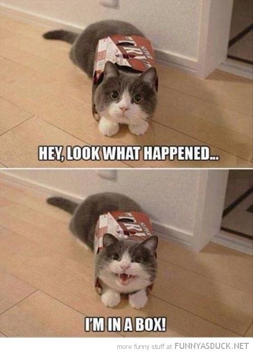 Look What Happened...