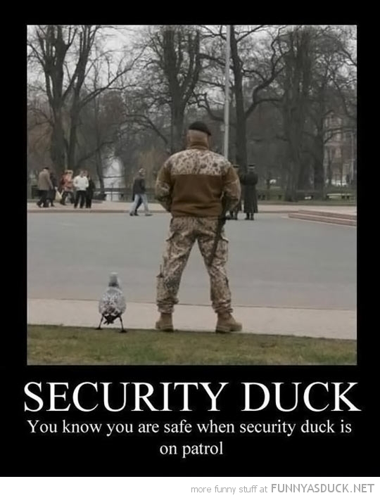 Security Duck
