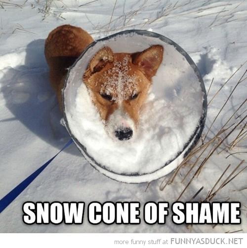 Snow Cone Of Shame