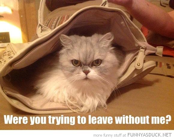 Leaving?