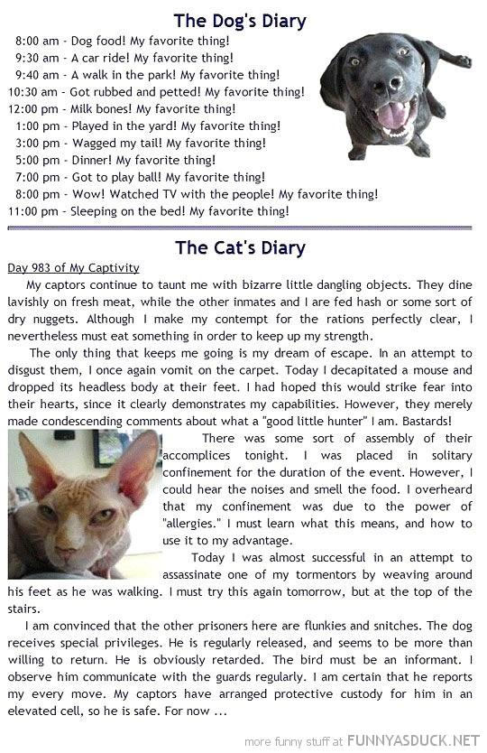 Dog & Cat Diary