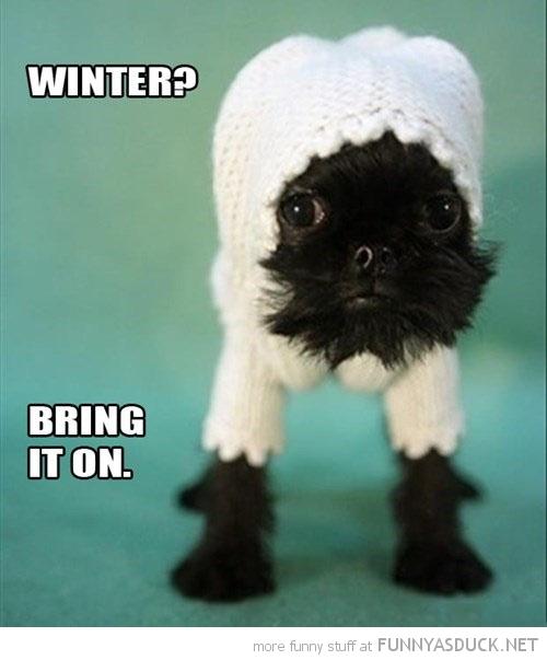 Winter?