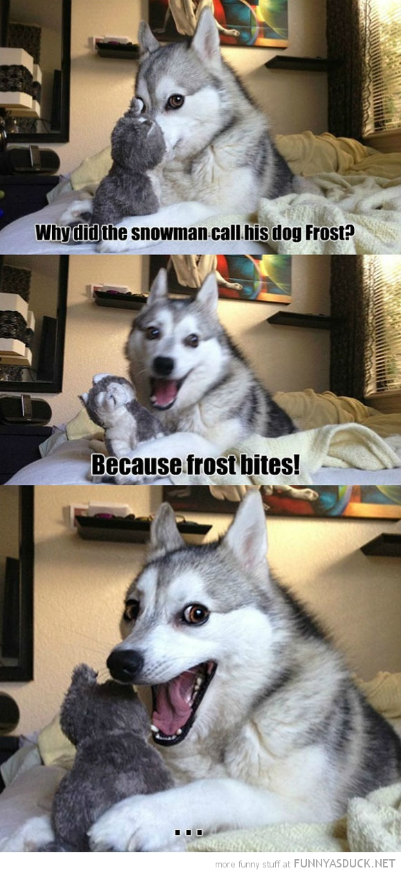 More Dog Jokes