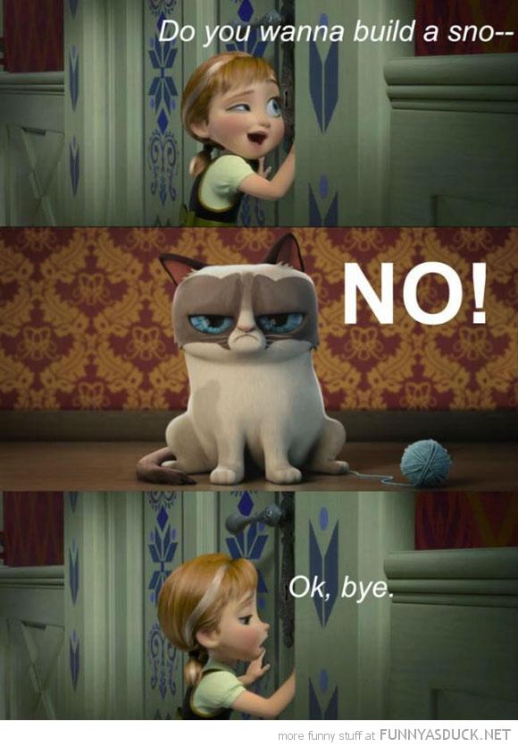 Grumpy Cat In Frozen