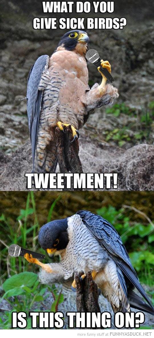 Stand Up Bird