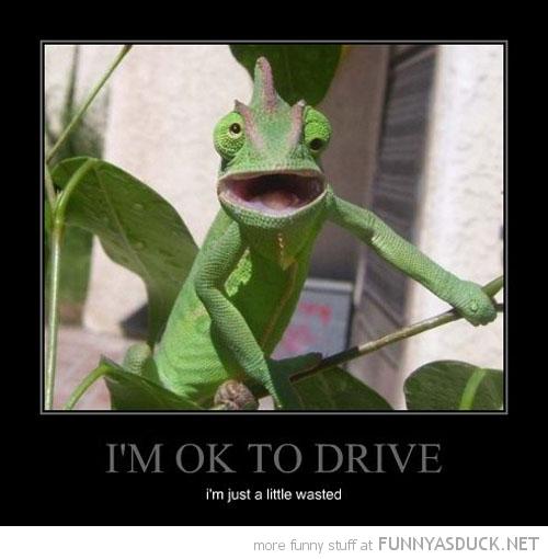 I'm OK To Drive