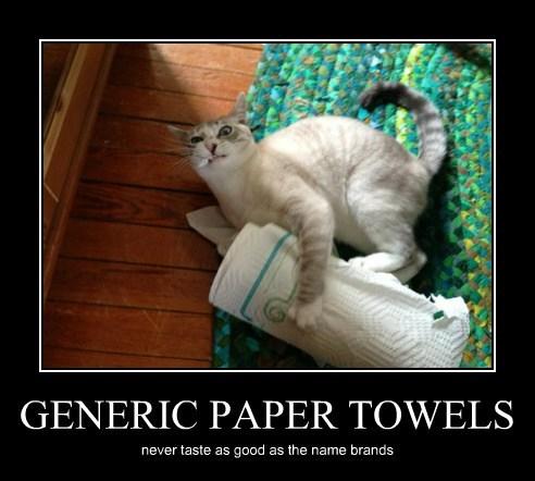 Generic Paper Towels