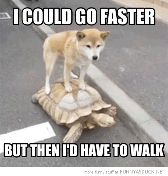 I Could Go Faster