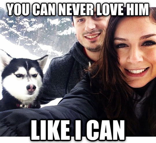 You Can Never Love Him
