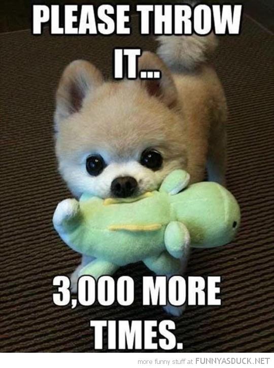 Please Throw It