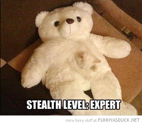 Stealth Expert