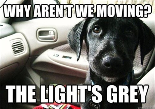 Why Aren't We Moving?