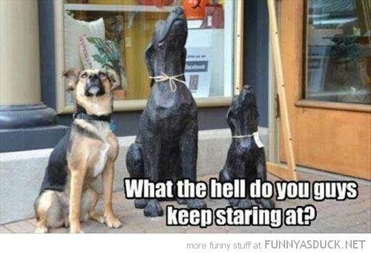 Keep Staring At