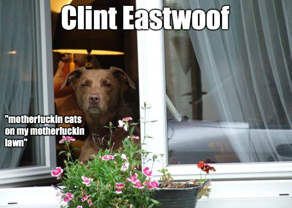 Clint Eastwoof
