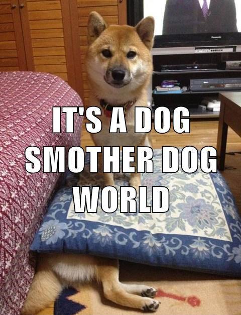 Dog Smother Dog