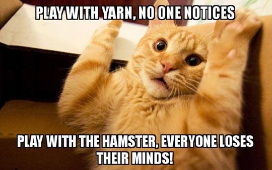 Play With Yarn