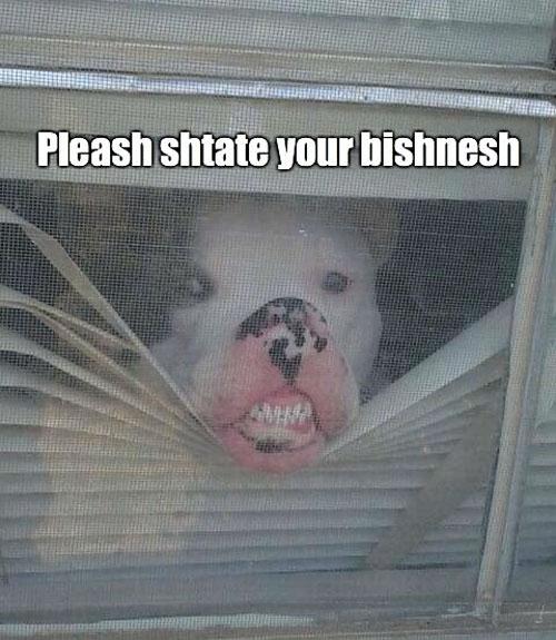Awesome Guard Dog