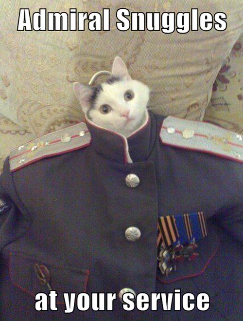 Admiral Snuggles