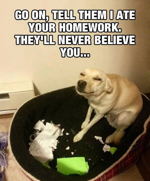 Ate Your Homework
