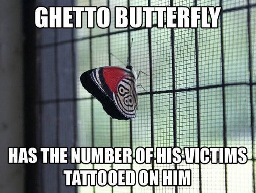 Ghetto Butterfly