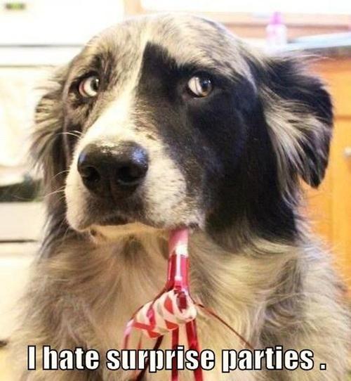Surprise Parties
