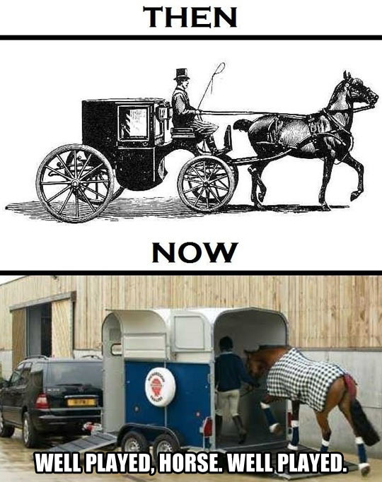 Horses Then & Now