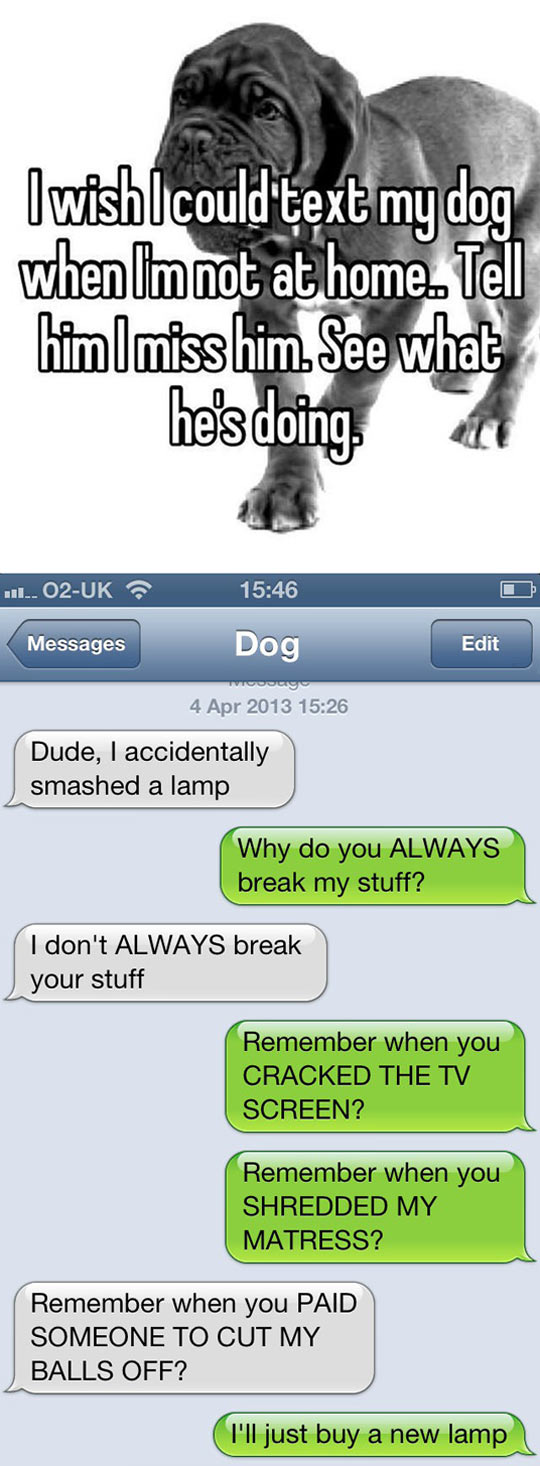 Text My Dog