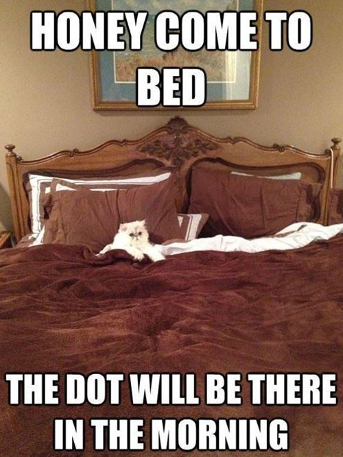 Come To Bed!