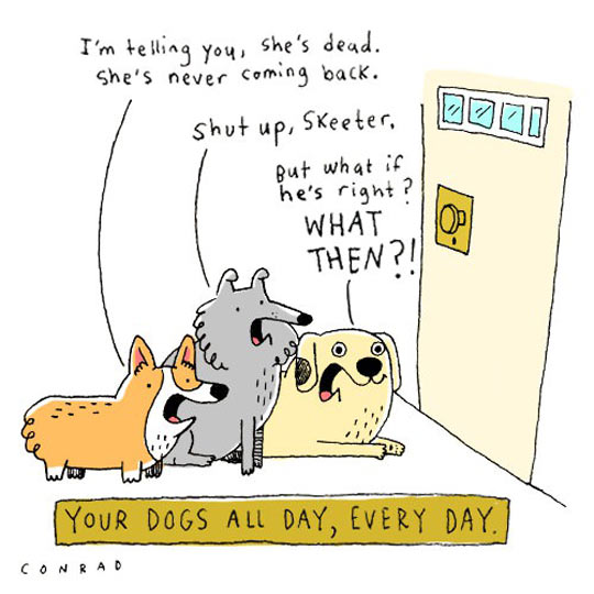 Your Dogs All Day