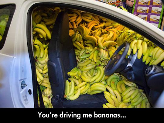 Driving Me Bananas