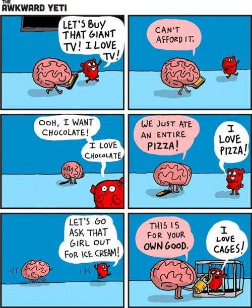 Heart vs Head