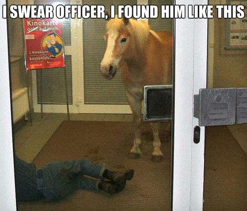 I Swear Officer