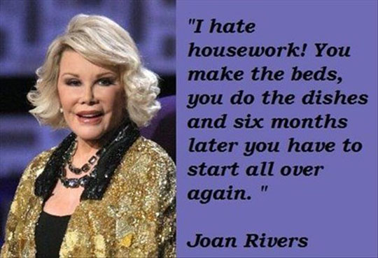 I Hate Housework