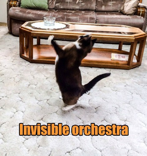 Invisible Orchestra