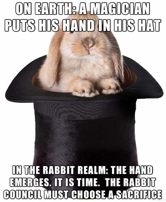 Rabbit Sacrifice