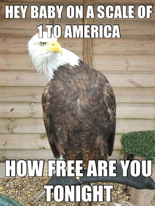 1 To America