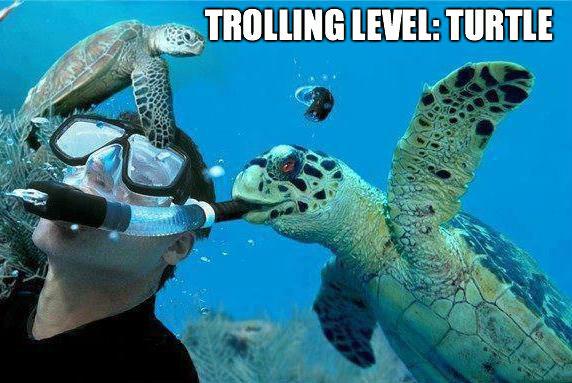 Trolling Turtle