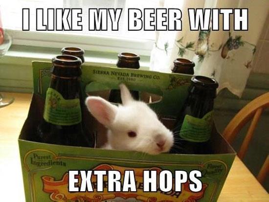 Extra Hops